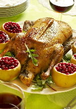 a_Apple_Cranberry_Duck